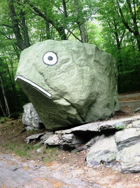 Frog Rock; Eastford, CT