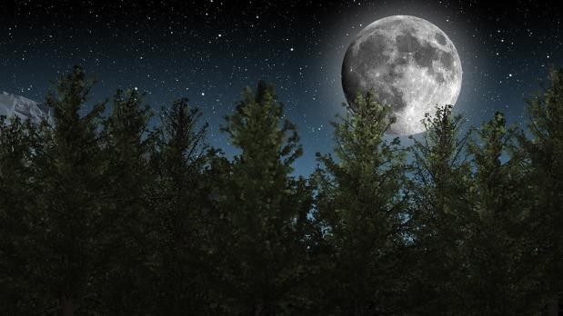 moon-1464926_1280